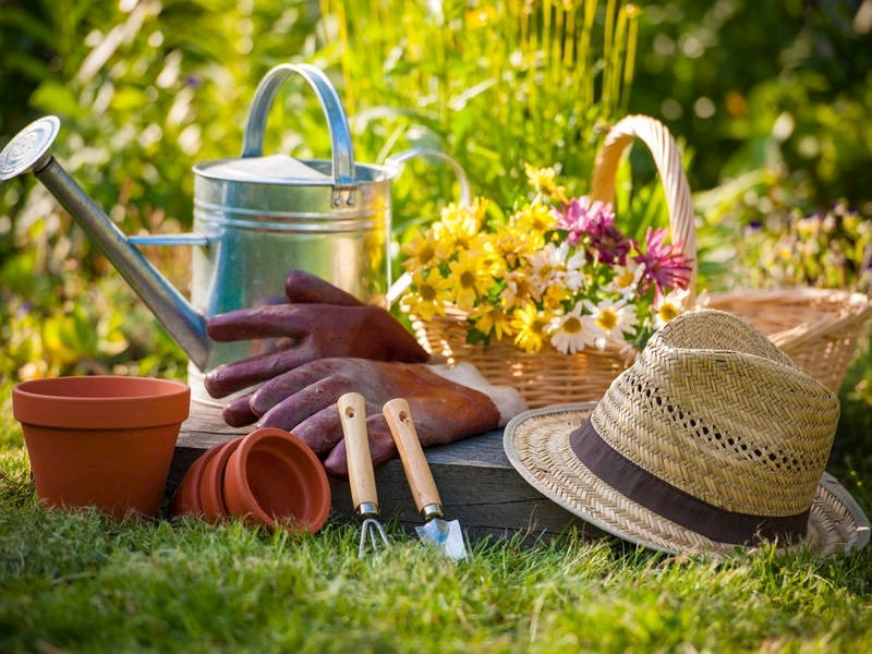 آشنایی با شغل باغبانی