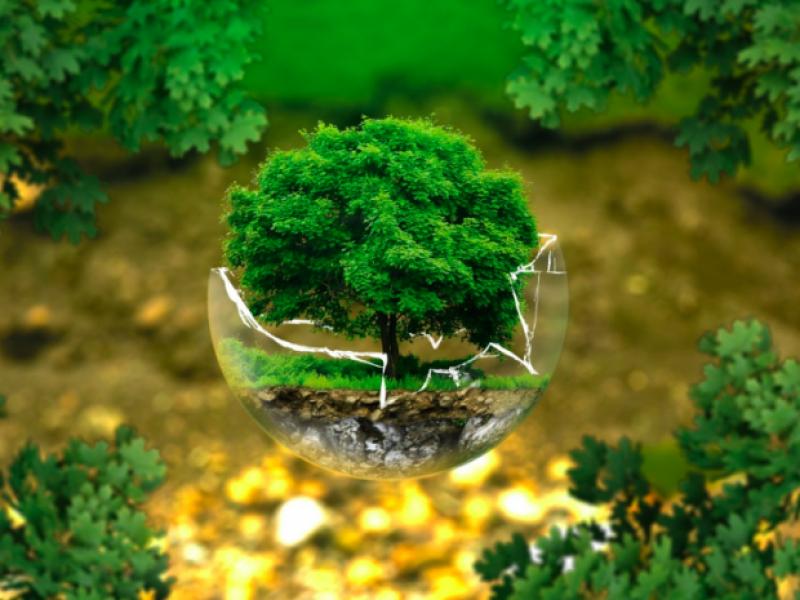 آشنایی با شغل مهندسی بهداشت محیط